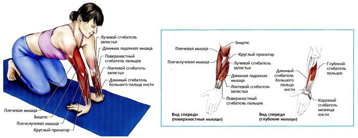 sayt-dlya-lesbiyanok-v-barnaule