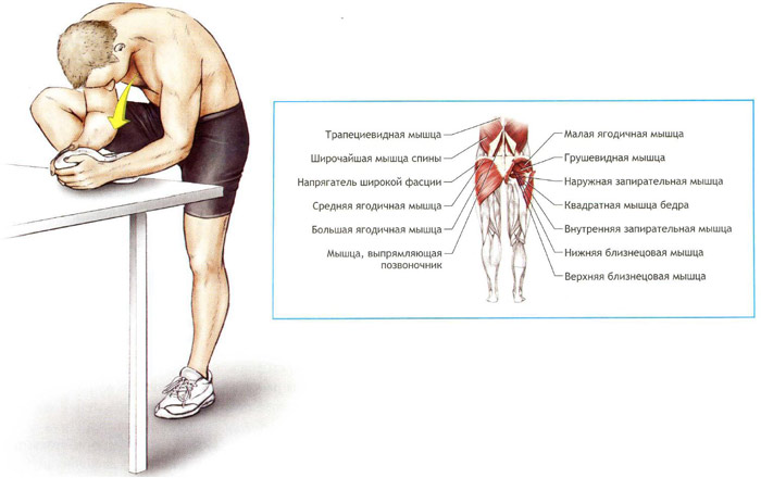 упражнения на икроножную мышцу фото