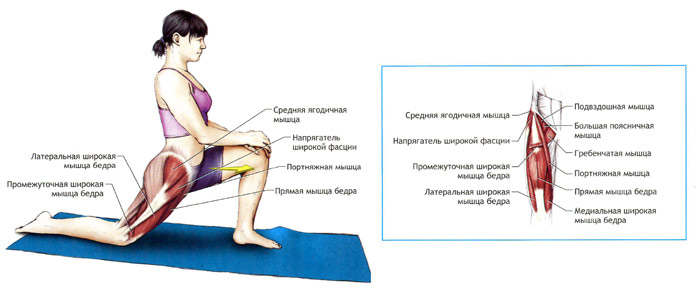 Упражнения для растяжки мышц тазобедренного сустава лечебная гимнастика при артрозе плечевого сустава